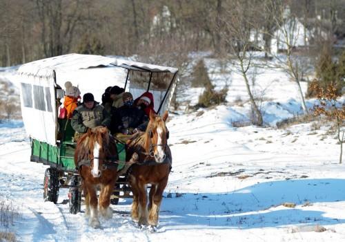 céges csapatépítés, lovaskocsis séta