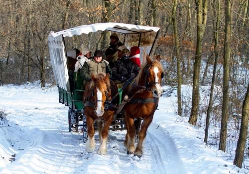 céges dolgozói rendezvény, lovaskocsikázás